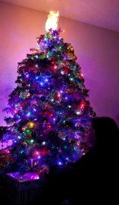 Day 342 - December 16, 2012